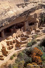 Tourists, Autumn, Cliff Palace, Ancestral Pueblo Dwelling, Mesa Verde National Park, Colorado, Summer, USA, World Cultural Heritage Site