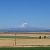 Mt Adams, also from Goldendale