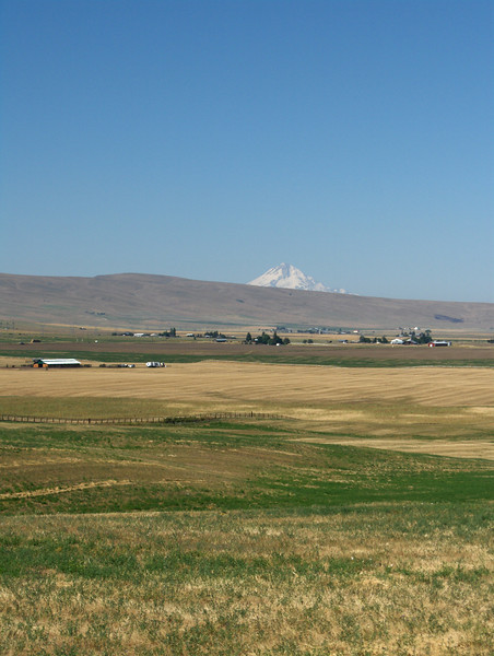 Mt Hood from Goldendale, WA
