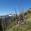 Heather and I drove up to Hart's Pass and hiked on the Pacific Crest Trail heading South