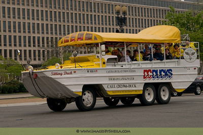 Summer time... summer time... here comes the DC Ducks amphibious tours.