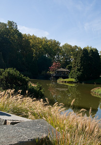The lake by the gazebo at the Brookside Gardens.