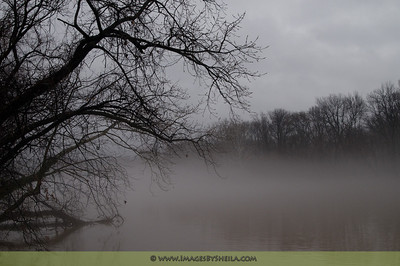 The misty, foggy, mysterious Potomac River by the Roosevelt Island bridge.