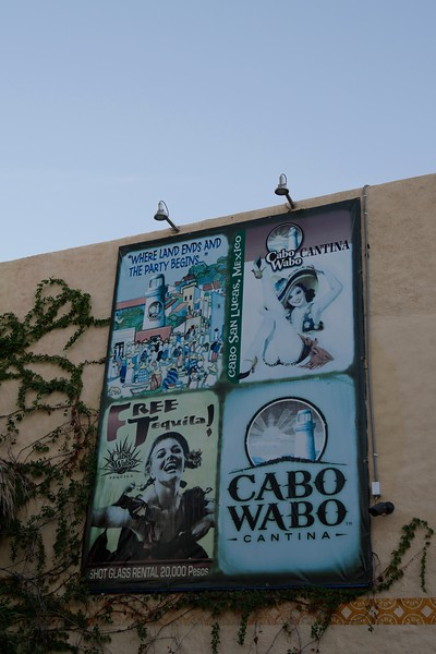 6. Cabo and Cabo Wabo