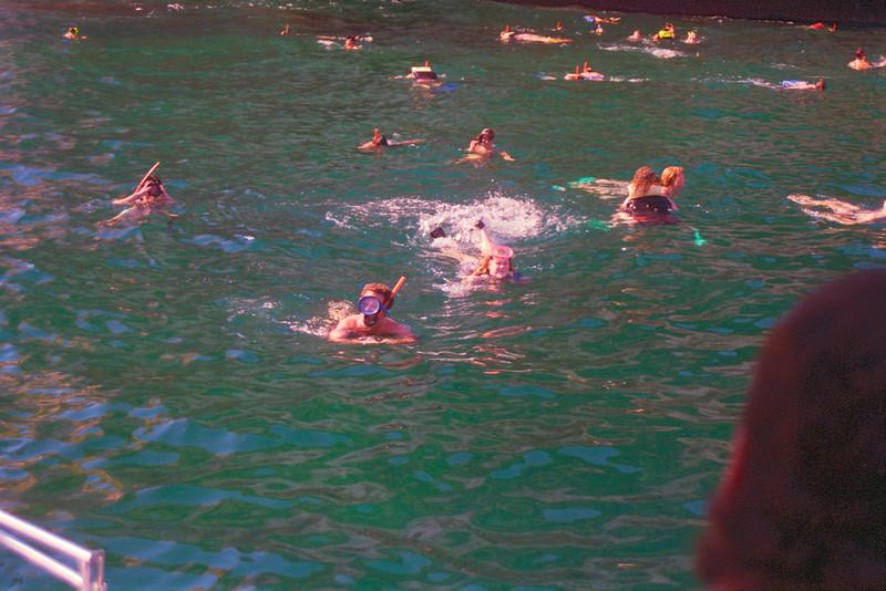 Celito Lindo Trimaran: Snorkeling at The Arches