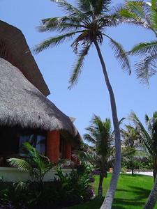 Tequila Restaurant exterior