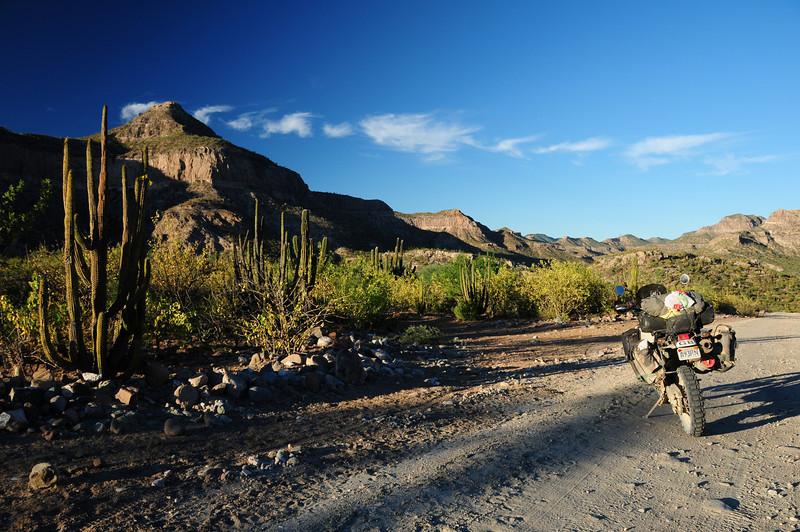Sierra Las Tarabillas (NW of La Paz),  Baja California