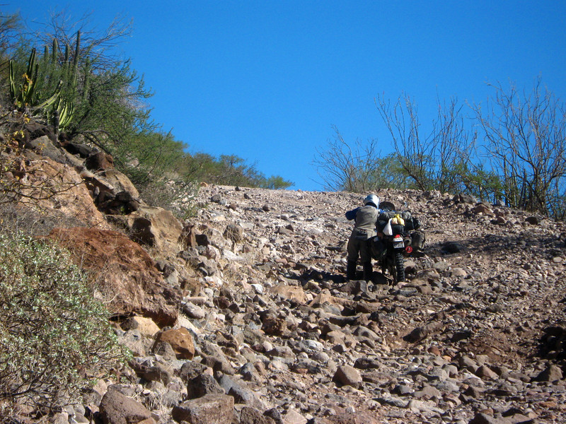 'Road' to San Jose de Comandu ,  Baja California