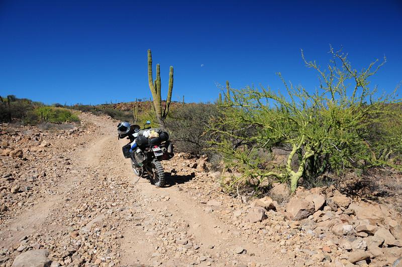 Road to San Jose de Commondu,  Baja California