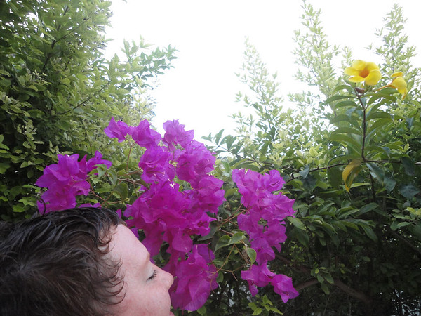 Stopped and smelled the flowers!