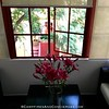 Red Tree House B&B - Condesa