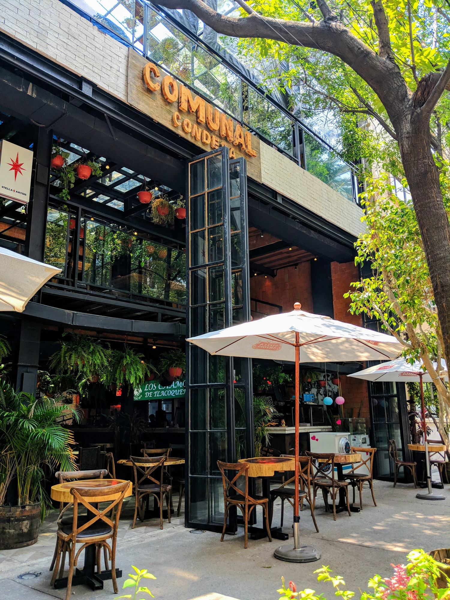 Where to find the best restaurants in La Condesa Mexico, Comunal Condesa is kid friendly with a kids play area.