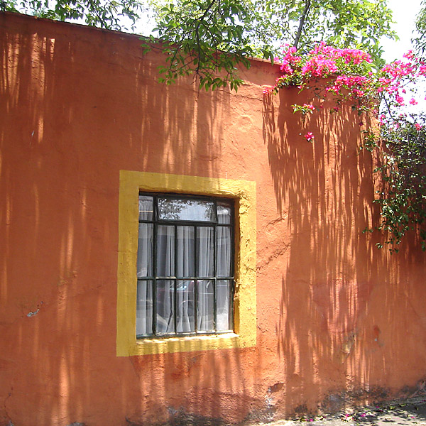 A house in Coyoacan