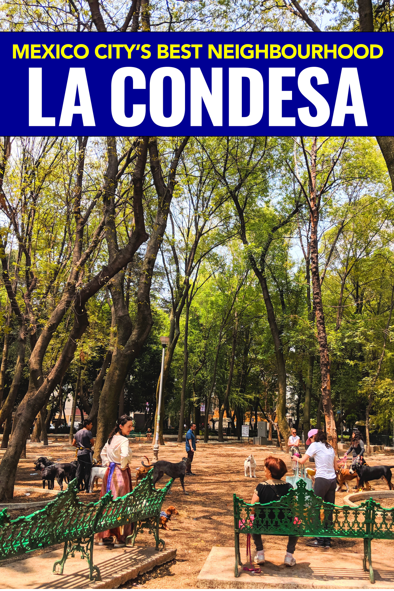 La Condesa Mexico City is one of the best neighbourhoods to stay in, discover what to do and where to eat in La Condesa.