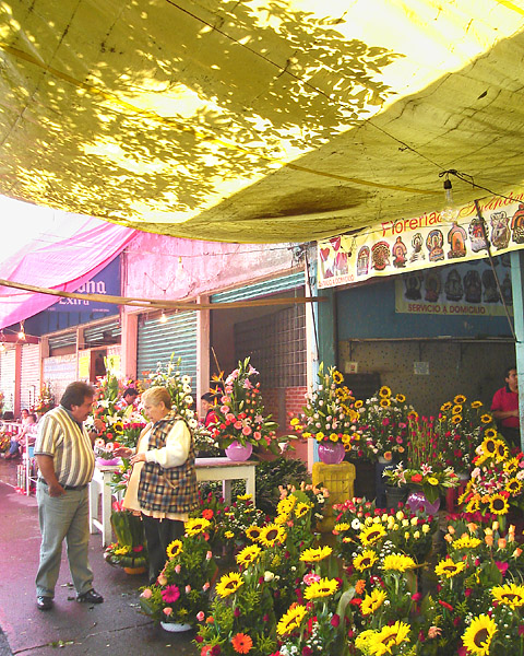 Flower vendor, across the street from Jamaica Market