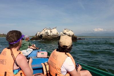 Laura and Joann  looking at Blue Footed Boobies and Brown Pelicans. This is just offshore from San Blas, near Piedras de la Virgen (Rock of the virgin). Senor Morales, or boat captain is at the back.