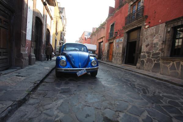 Mexico - Käfer