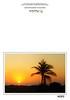 Sunrise on the limestone beach of the Riviera Maya.