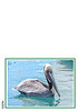 Brown Pelican in breeding plumage. Look at this one in large mode. Beautiful!<br /> <br /> Almost as nice is the turqoise sea off Cabo.