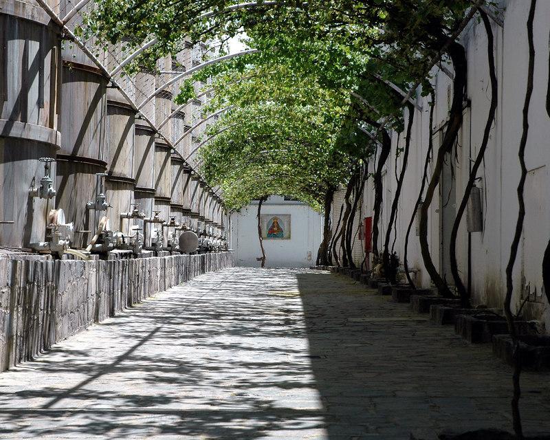 Parras, Coah. Casa Madero. Por la sombrita a la fe.