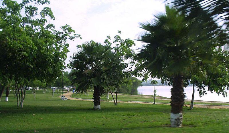 La Laguna en Tampico es bonita como el Town Lake en Austin.