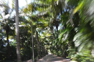 Mexico USA Trip October 2013 Cozumel