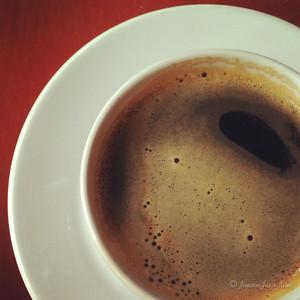 Coffee at Finca Argovia
