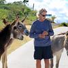 2019-11-13_279_East Cape_Donkeys_Tony.JPG
