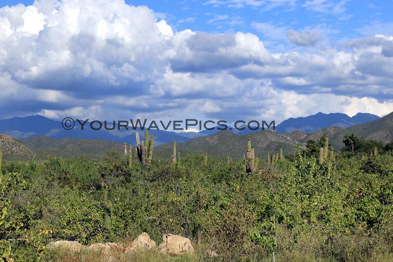 2019-11-12_263_Cerritos_Mountain View.JPG