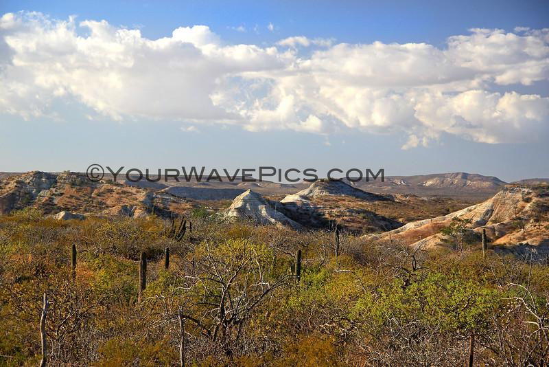 2016-01-26_Baja Canyons_9636.JPG