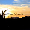 2016-01-28_Cerritos Sunrise_9736.JPG
