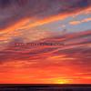 2013-11-02_Cerritos Sunset_0765 Vert.JPG
