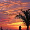 2008-11-22_Cerritos Sunset_1617 Vert.JPG