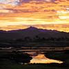 2019-11-10_133_Cerritos Sunrise SF.jpg