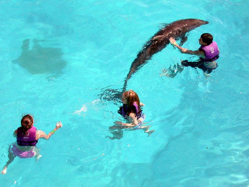4 Aquarium17