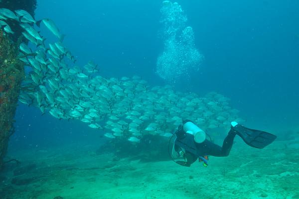 Cancún Underwater