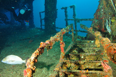 A ladder from the upper deck, collapsed down onto the second deck.   The C58, also known as General Anaya, is a shipwreck in the waters between Cancun and Isla Mujeres, at a depth of 80 to 100 feet.. The ship is a former US navy vessel used as a minesweeper during World War II – originally named the USS Harlequin -- that passed hands to the Mexican Navy, who later deliberately sunk it in the 1980s to create an artificial reef.     © Joseph W. Dougherty, MD. All rights reserved.