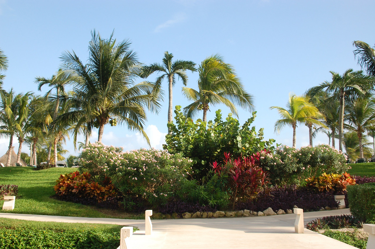 View of the grounds in front of the Jade Boutique