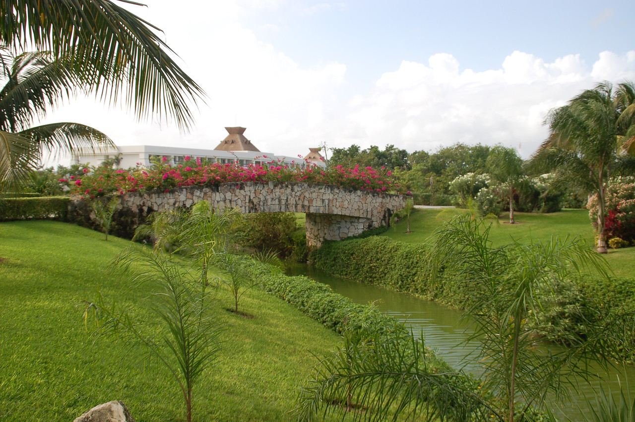 Tropical paradise of lush foliage, meandering lakes