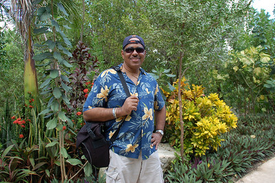 Tropical garden pathway.