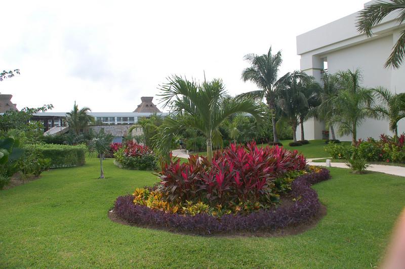 Tropoical foliage - at buliding 3