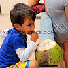 5609_Pakal_coco bandito.JPG<br /> Pakal taught Stefan a lesson not to leave a nice, cold coconut sitting around unattended!