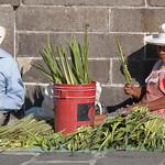 Puebla-2521