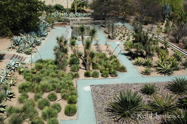 Ethnobotanical Gardens in Oaxaca, Mexico. © Rob Huntley