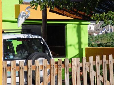 Puerto Morelos / November 22-24, 2006