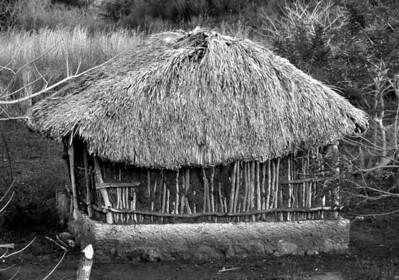 Mayan style hut.