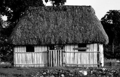Hut in the Yucatan area.