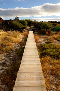 Boardwalk on Isla Coronado, Loreto