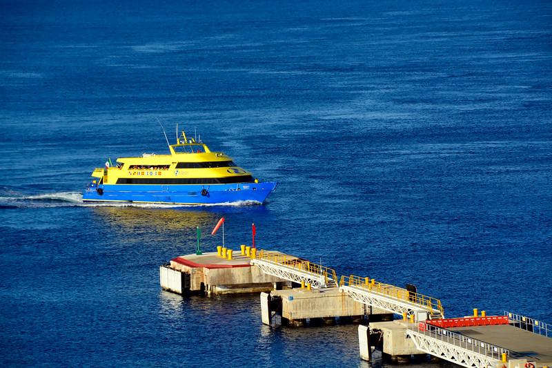 CaribbeanPrincessCruise-Cozumel-12-1-16-SJS-074