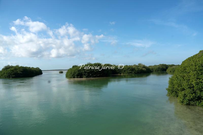 Sian Ka'an waterway-02499